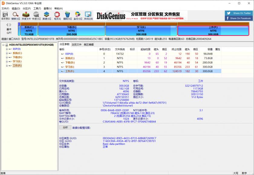 DiskGenius Pro v5.3.0.1066 绿色版